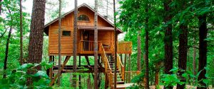Pros and Cons of Treehouse Tiny Living